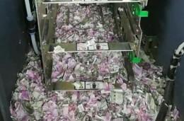 Плъх проникна в банкомат, изяде 20 хиляди долара... и умря